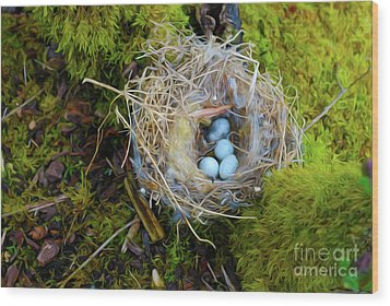 Wood Print featuring the photograph Mother Of Four by Laura Brightwood
