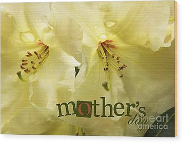 Wood Print featuring the photograph Mothers Day by Jean OKeeffe Macro Abundance Art
