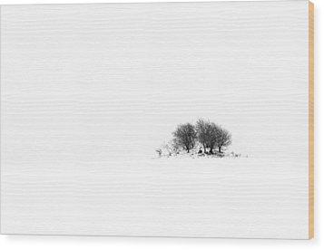 Mound Wood Print by Gert Lavsen