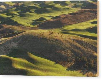 Mounds Of Joy Wood Print by Ryan Manuel