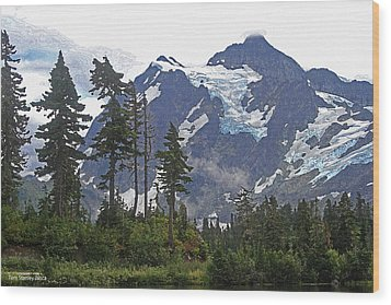 Wood Print featuring the photograph Mount Baker And Fir Trees And Glaciers And Fog by Tom Janca