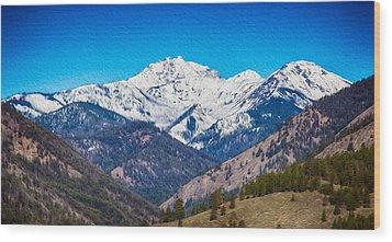 Mount Gardner Close Up Wood Print by Omaste Witkowski