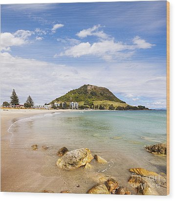 Mount Maunganui Bay Of Plenty New Zealand Wood Print by Colin and Linda McKie