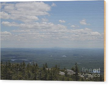 Mount Monandock Summit View Wood Print