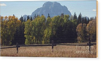 Wood Print featuring the photograph Mount Moran by Janice Westerberg
