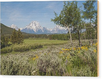 Mount Moran View Wood Print by Brian Harig