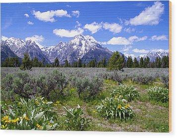 Mount Moran Wildflowers Wood Print by Brian Harig