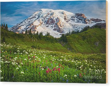 Mount Rainier Flower Meadow Wood Print by Inge Johnsson