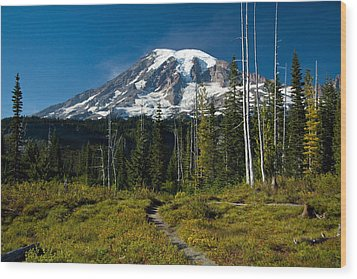 Wood Print featuring the photograph Mount Rainier From Snow Lake Trail by Bob Noble Photography