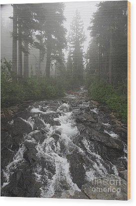 Mount Rainier National Park Wood Print