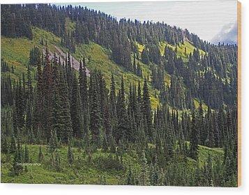 Mount Rainier Ridges And Fir Trees.. Wood Print by Tom Janca
