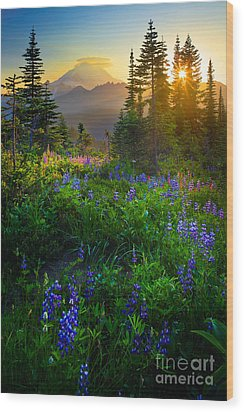 Mount Rainier Sunburst Wood Print by Inge Johnsson