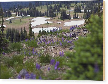 Wood Print featuring the photograph Mount Rainier Wildflowers by Bob Noble Photography