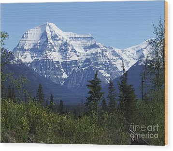 Mount Robson - Canada Wood Print by Phil Banks