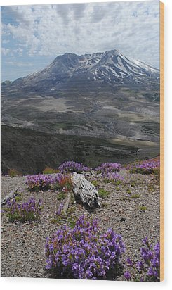 Mount Saint Helen's In Summer Wood Print