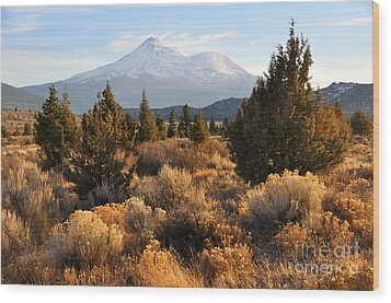 Mount Shasta In The Fall  Wood Print