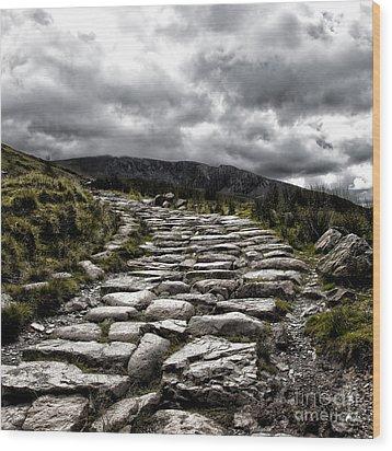 Mount Snowdon Path Wood Print by Jane Rix