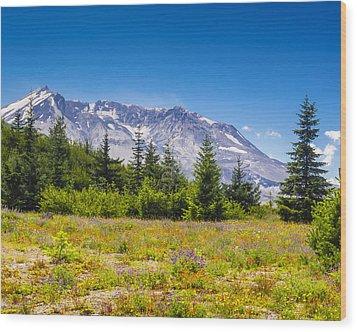 Mount St. Helens Wood Print