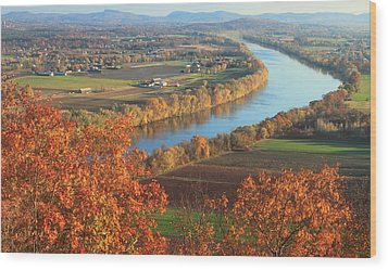 Mount Sugarloaf Connecticut River Autumn Wood Print