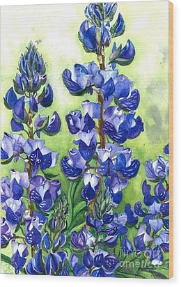 Mountain Blues Lupine Study Wood Print by Barbara Jewell
