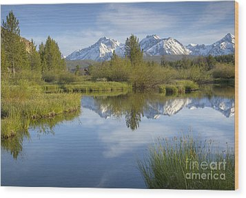 Mountain Daydream Wood Print by Idaho Scenic Images Linda Lantzy