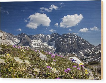 Mountain Flowers Wood Print