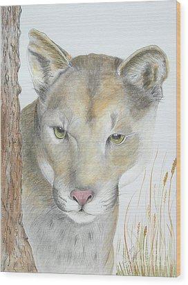 Mountain Hunter Wood Print