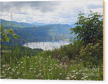 Mountain Lake Viewpoint Wood Print by Carol Groenen