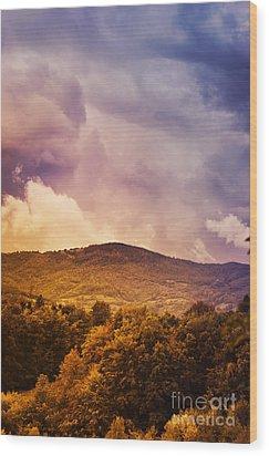 Mountain Landscape Wood Print by Jelena Jovanovic