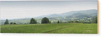 Mountain Panorama Wood Print by Vlad Baciu
