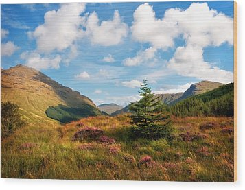 Mountain Pastoral. Rest And Be Thankful. Scotland Wood Print by Jenny Rainbow