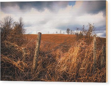 Mountain Pasture Wood Print by Bob Orsillo