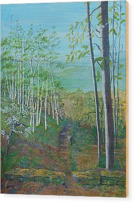 Mountain Path Wood Print by Christine Lathrop