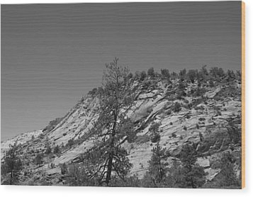 Mountain Path Wood Print by Kimberly Oegerle