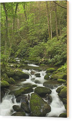 Mountain Rapids Wood Print by Andrew Soundarajan
