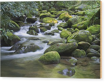 Mountain Stream 1 Wood Print by Larry Bohlin