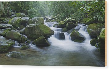 Mountain Stream 2 Wood Print by Larry Bohlin
