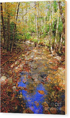 Mountain Stream Covered With Fall Leaves Wood Print