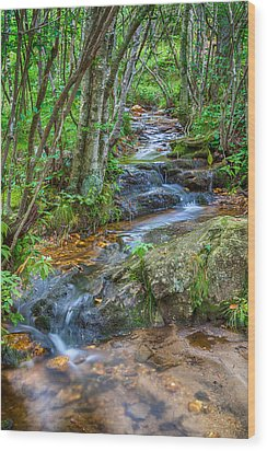 Mountain Stream Wood Print by David Cote