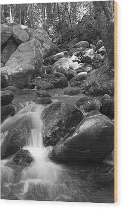 Mountain Stream Monochrome Wood Print by Larry Bohlin