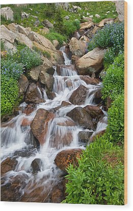 Wood Print featuring the photograph Mountain Stream by Ronda Kimbrow