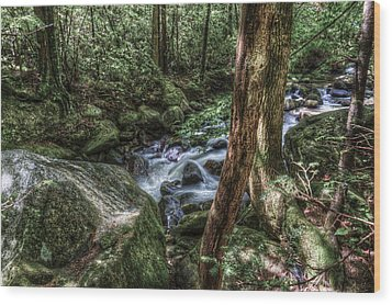 Mountain Streaming Wood Print