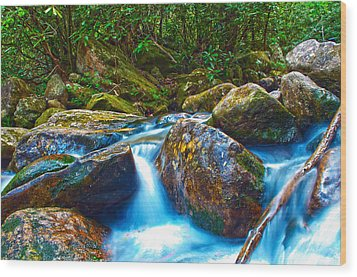 Wood Print featuring the photograph Mountain Streams by Alex Grichenko