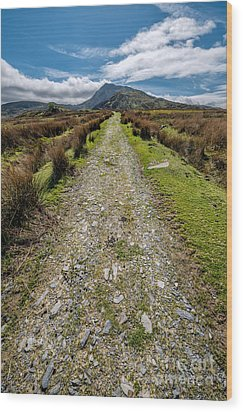 Mountain Track Wood Print by Adrian Evans