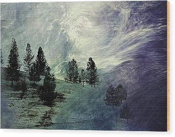 Wood Print featuring the photograph Mountain View by Athala Carole Bruckner