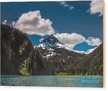 Mountain View Wood Print by Robert Bales