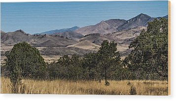 Mountain Vista Wood Print by Beverly Parks