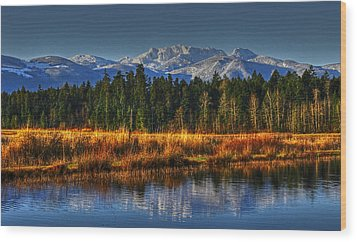 Mountain Vista Wood Print by Randy Hall