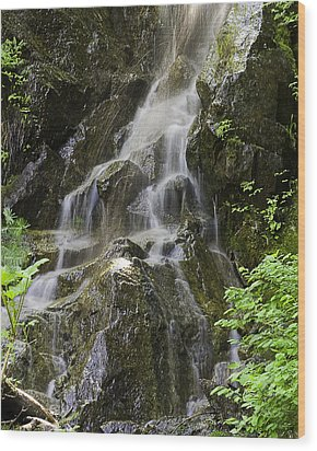 Mountain Waterfall Wood Print by Gary Neiss