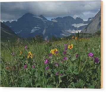 Mountain Wildflowers Wood Print by Alan Socolik